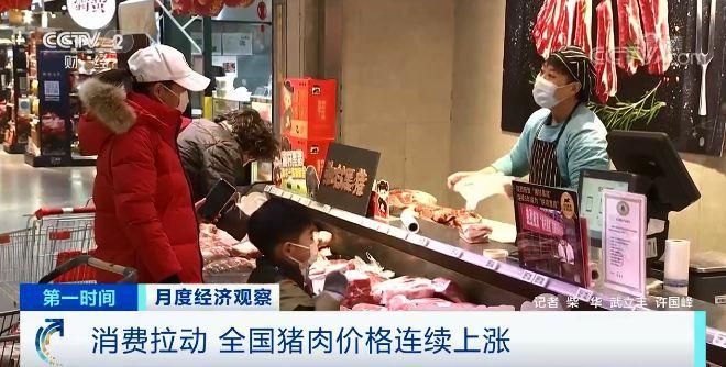 猪肉价格连续上涨 生猪期货跌跌不休