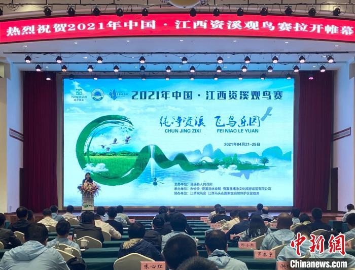 """2021年中国·江西资溪观鸟赛开幕 进一步摸清鸟类资源""""家底"""""""
